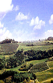 The Chianti hills near Montespertoli (Italy)